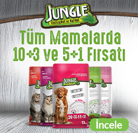 jungle-mf-img.jpg (91 KB)