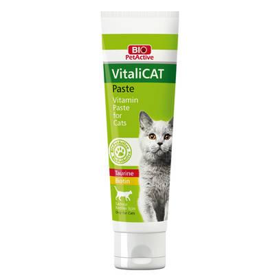 Bio PetActive - Bio PetActive Vitalicat Paste 100 ml