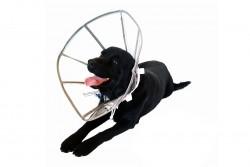 DogCat Plus - DogCat Plus Elizabeth Şeffaf Yakalık L