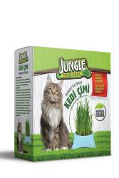 Jungle - Jungle Kedi Çimi 6'lı