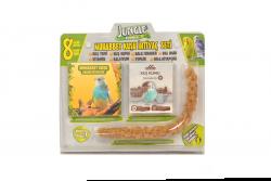 Jungle - Jungle Muhabbet Kuşu İhtiyaç Seti 4'lü Paket.