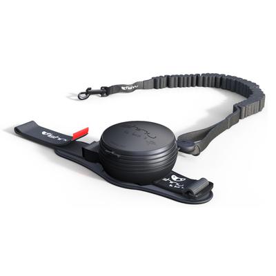 Lishinu - Lishinu Siyah Bungee Akıllı Kon.Gezdirme L 13-40Kg