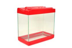 Atg - Plastik Kapaklı Mini Akvaryum