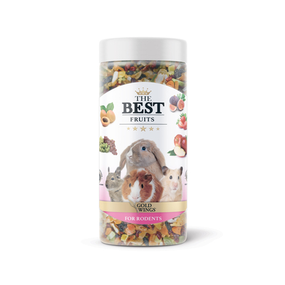 Gold Wings The Best - The Best Kemirgen Fruit Snack 150 gr 6 Adet