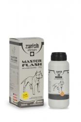 Zürich - Zürich Master Flash 500 ml